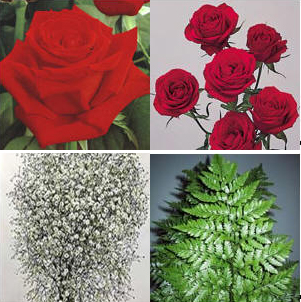 Combo Box #3 Roses and Spray Roses: Image