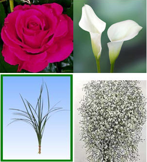 Combo Box #2 Roses and Mini Callas Image