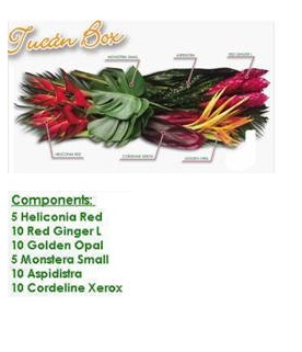 Tropical Box 2 Image